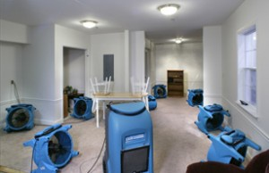 Water Damage Hillsboro MO